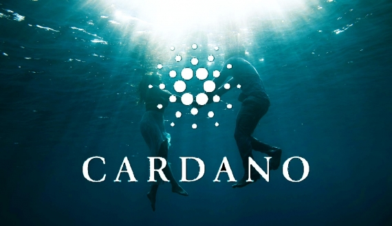 Cardano vs. Bitcoin - investory-video.com