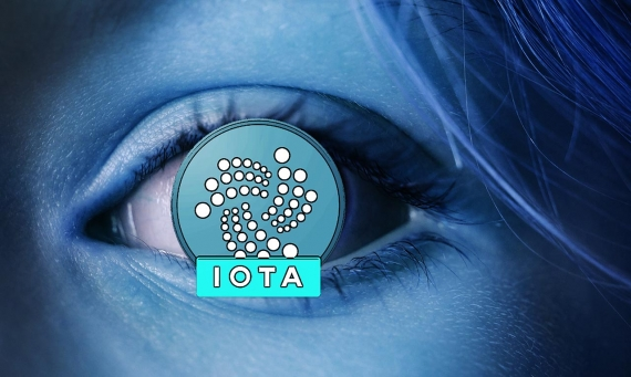 IOTA vs. Bitcoin: Should You Invest in IOTA? - investory-video.com