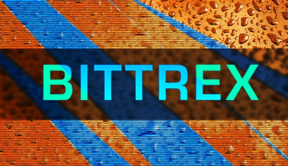 Is Bittrex a Scam? - investory-video.com