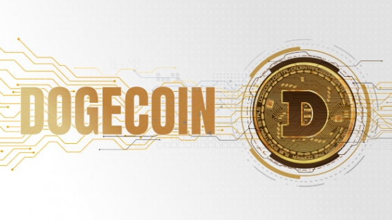 "text that says ""dogecoin"""