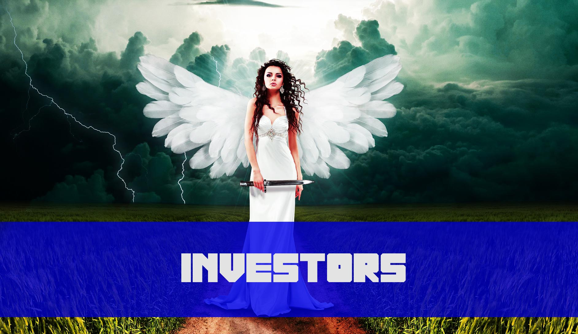 Angels Vs. Seed Money vs. VCs