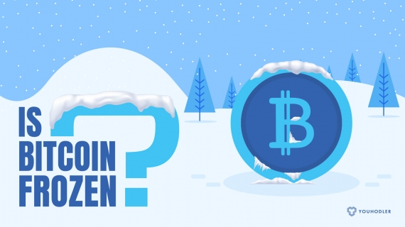 Is Bitcoin (BTC) Frozen and When Will it Recover?